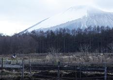 岩手県八幡平市の風景
