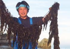 ふるさと応援団マルシェ 三重県伊勢志摩 若手漁業者の皆様が採取・加工・販売し、漁業の邪魔者だった「あかもく」を特産品に